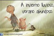 Español_Coloquial_Refranes / Frases coloquiales, refranes y expresiones en español
