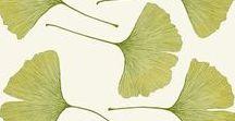 19.식물식물