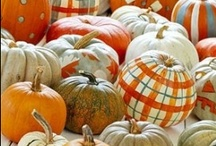 Eeek!   Halloween Ideas