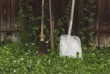 cabin in the woods / by - Mar y Tierra -
