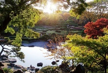 beautiful gardens & parks