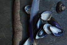 Indigo Blue & Ikat Too / Deep moody blue and vibrant pattern / by Studio Blue NZ Ltd