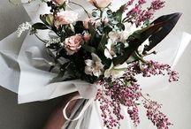 花 • Flora