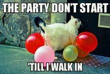 a little Party never killed nobody / Party planning