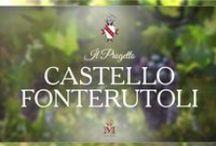 Progetto Fonterutoli