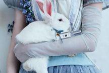 Alice shoot - Alice and white rabbit