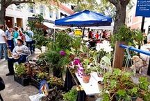 Bradenton Farmer's Market / Every Saturday, 9AM-2PM, October-May Old Main Street (12th Street West) Downtown Bradenton Welcome to the Downtown Bradenton Farmers' Market - a place where the community meets each week to enjoy fresh produce, local art, upbeat music, demonstrations by local chefs, and free family activities.   Parking is free on weekends, and dogs on leashes are welcome.