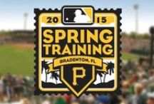 Baseball in Bradenton / McKechnie field near the Village of the Arts in Downtown Bradenton is the perfect place to watch a ball game! From the Bradenton Marauders in regular season to the home of the Pittsburgh Pirates' spring training... we've got it all.