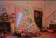 CHRISTMAS TREES / All sizes of Christmas trees decorated in all sorts of ways!!! / by Marian Alsobrooks