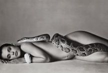 Girl & Snake / Kinski/Avedon photo and all tributes and/or inspirations