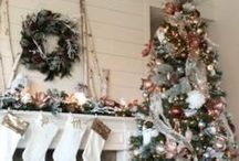 Christmas Trees for the Home