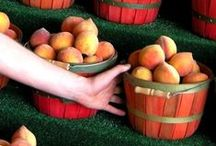 Georgia Peaches / by Georgia Farm Bureau