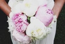 Peone wedding bouquet..