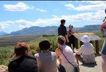 Visitas al Parque Natural Marjal de Pego-Oliva / Excursiones por el parque natural Marjal de Pego-Oliva - ruta del arroz - ruta de los naranjos. Más información en: info@pegonatura.es