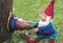 Gnomes / A board for garden gnome appreciation @truviauk