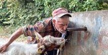 Οι άνθρωποι της «άλλης» Ελλάδας