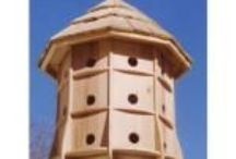 Birdhouses / WorkshopSupply.com carries a large selection of bird house & bird feeder plans. http://store.workshopsupply.com/catalogue/birdhouses-feeders-mailbox-c-206_216_217.html