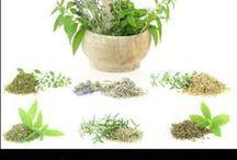 health and herbs / gezondheid