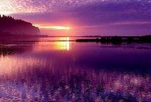 Purpur/purple - the color of kings
