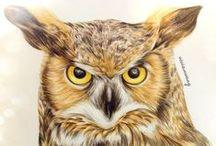Owls 1 / ART