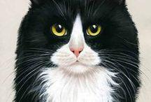 Cat Faces 2 / ART