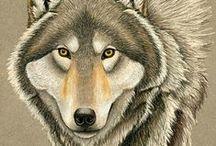 Wolves in Art 1 / ART