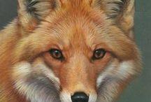 Fox in Art 1 / ART