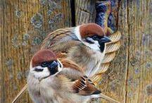 Birds 3 / ART