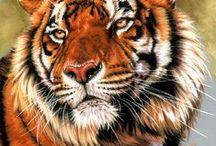 Tigers in Art 2 / ART