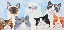 Cat Faces 5