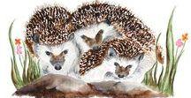 Hedgehogs in Art 2