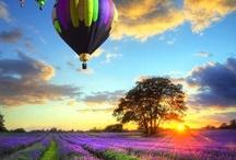 Beautiful Beginnings and Happy Endings............Sunrises and Sunsets / by Deborah G.