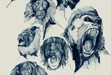 Animal Art & Illustrations / by J. Schuh