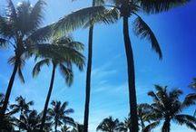 Maui No Ka Oi Maui is the Best / Maui is the Best! Maui Beaches, Maui Wedding Destinations, Maui Celebrations, Off the Beaten Path Maui Spots, Most Magical Spots on Maui, Top 10 Things You Didn't Know About Maui
