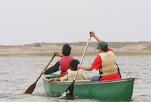 Point Reyes Summer Camp / by Point Reyes National Seashore Association (PRNSA)