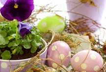 Easter: Ideas & Inspiration / make sure the bunny shows up! with these ideas for your next Easter celebration