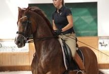 Real E / Real and authentic equestrians