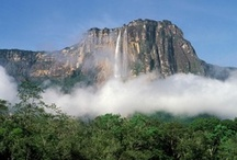 Venezuela / Come and travel to Venezuela's sublime landscapes with us on our tours that we customize just for you – the high Andean peaks around Mérida; the steamy rainforest on the banks of the great Amazon and Orinoco rivers; the vast Gran Sabana peppered with its dramatic table-top mountains (tepuis).