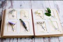 Lavender palettes / lavender tones.