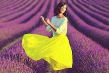Love Love Lavender
