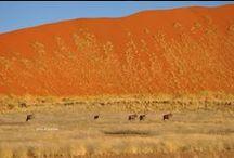 Namibia: il deserto / Il deserto del Namib una vera meraviglia!! Anche tornarci più volte è sempre piacevole....