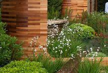 Dream garden inspiration
