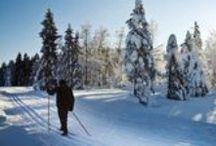 Wintersport in Oberhof / Aktiv im Winter sein, dafür gibt es zahlreiche Möglichkeiten in Oberhof (Thüringer Wald)