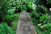 Garden - path (trädgårdsgång)