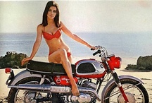 Bikes / by Chelsea Stock