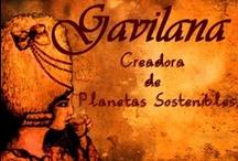 STANDS / www.gavilana.com