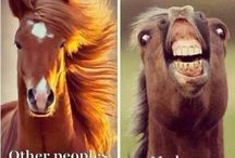 Only Horse Peeps Understand