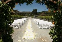 Wedding Ceremonies / Bring your fairytale wedding to life at Folktale Winery & Vineyards. With our Wine Garden, Barrel Room, and Vineyards, we have a venue that's perfect for you!