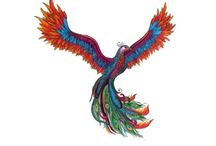 Phoenix Tattoo Fixes / My phoenix tattoo needs fixing