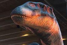 Ferganasaurus / Ferganasaurus,Sculpture